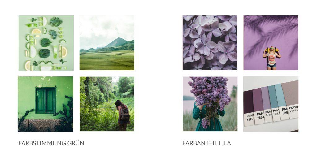 Farbstimmung von Bildern für dein Branding