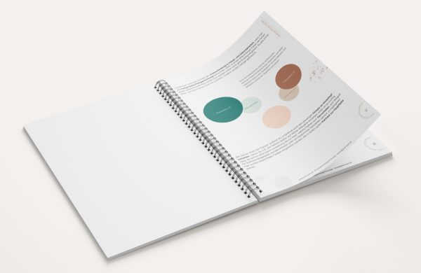 workbook brand colors